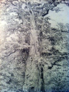 Alte Eichen mit sitzendem Mann, 1830-38 G.H. Crola